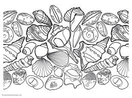Small Picture Seashell Coloring Pages 1111