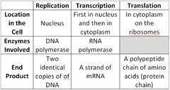 Amino Acid Translation Chart Basic Explanation Chart Of Dna Replication Transcription