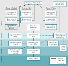 3 Organizational Structure And Interlinkages Between Moph