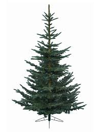 Buy 1.8M (6ft) Nobilis Fir Artificial Christmas Tree from Seasons Christmas  Outlet