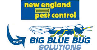 Big Blue Bug Solutions About Big Blue Bug Solutions Pest Control In Ri Ma And Ct
