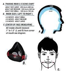 Training Mask Expert