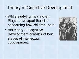 cognitive development essay