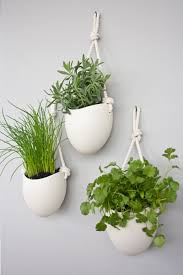 These white porcelain bowls hang from rope to create simple, contemporary  planters that are large enough to plant a variety of herbs or smaller  plants.