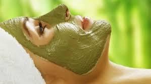 """Résultat de recherche d'images pour """"image masque argile verte"""""""