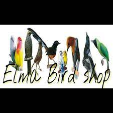 elma bird shop - Community | Facebook