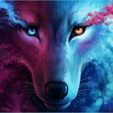 HD Wallpapers - Wolf Wallpaper 4k ...
