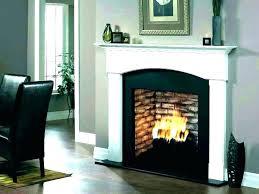 home depot fireplace logs home depot gas fireplace insert fireplace logs home depot s s gas log