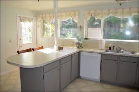 best white paint for kitchen cabinetsKitchen  Grey Kitchen Backsplash Benjamin Moore Cabinet Paint Can