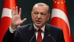 أردوغان يلقي السلاح