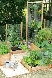 vegetable garden designs affordable backyard vegable garden designs ideas vegetable garden designs nz
