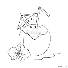 vector contour coconut tail drink with umbrella and orchids flower coloring book