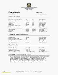 Resume Font Size Awesome Types Resume Formats New Actor Resume