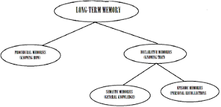 Long Term Memory Chart Vocab Thx4dmmrs107