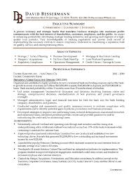 Writing An Executive Summary For A Resume Inspirational Resume