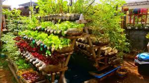 beginner vegetable garden. Fine Vegetable Building  With Beginner Vegetable Garden A