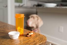 Dog Aspirin Dosage Chart Can I Give My Dog Aspirin A Guide To Aspirin For Dogs