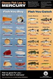 High Mercury Fish Chart Fish Is One Of The Best Sources Of Protein But Watch Out
