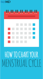 How To Chart Your Menstrual Cycle Getting Pregnant