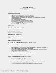 100 Promotional Resume Sample 55 Amazing Graphic Design