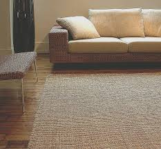 natural fiber rugs that are soft for home decorating ideas beautiful 12 best natural fiber rugs images on