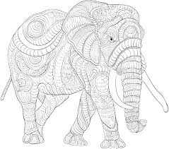 baby elephant printable template free coloring pages coloring pages of elephants coloring page elephant head pencil