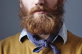 bearded men have poop on their faces new york post