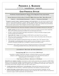 executive resume writer resume writer for cfos executive resume service for finance