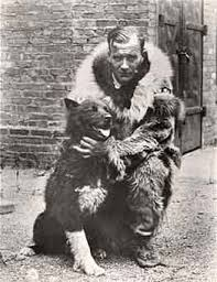 The Real Story of Amblin's Balto – American Kennel Club
