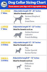 Small Dog Collar Size Chart 37 Symbolic Green Dog Clothing Size Chart