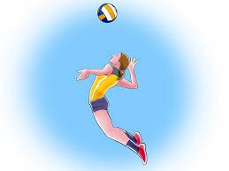 volleyball clipart wallpaper