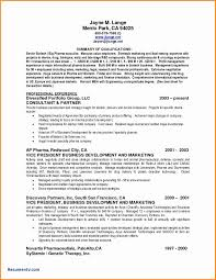 Resume Summary 100 Summary Of Qualifications Resume Essay Checklist 16