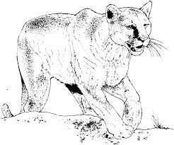 Small Picture Great Panther Coloring Pages 84 For Picture Coloring Page with
