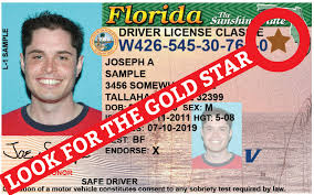 Driver Requirements Florida Requirements License Driver Florida License