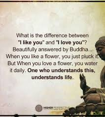 Buddha Quotes On Death Adorable Buddha Quotes About Love Stunning Buddha Quotes About Life Death