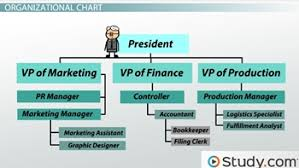 Video Production Organizational Chart Organizational Chart And Hierarchy Definition Examples