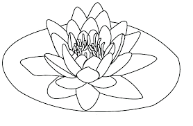 Free Printable Hawaiian Flowers Coloring Pages Flower For Winning