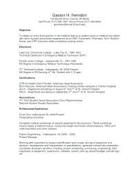 Resume Center Gorgeous Sample Objectives In Resume For It Professional Objectives For