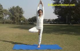 breathing in tree pose yoga