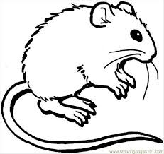 Small Picture Mouse 3 Coloring Page Coloring Page Free Mouse Coloring Pages