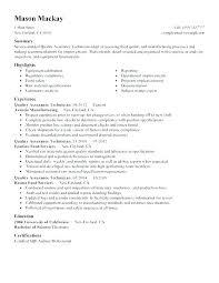 Buyer Resume Sample – Hflser
