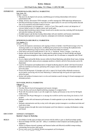 Manager Digital Marketing Resume Samples Velvet Jobs