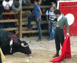 Resultado de imagem para barrancos touros de morte