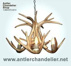 white antler chandelier faux antler chandelier white medium image for white antler chandelier white antler chandelier white antler chandelier