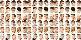 Mens Haircut Chart 38 Faithful Male Hairstyle Chart