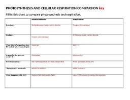 Photosynthesis And Cellular Respiration Comparison Table