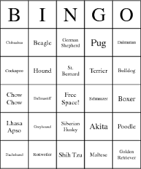 dog breeds bingo card