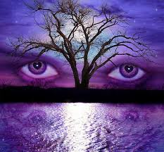 If you wish to try a different product(s), please return the product(s) in its entirety (all components of the bundle 1. Pin By Lynn Morgan On Boden Colour Me Happy Campaign Purple Eyes Purple Purple Love