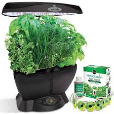 Kitchen Herb Garden Kit Amazoncom Miracle Gro Aerogarden Classic 6 With Gourmet Herb