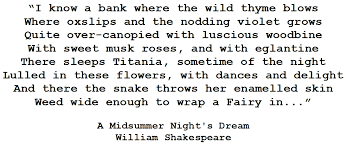 Midsummer Nights Dream Quote Best of Quoting The ClassicsA Midsummer Night's Dream Sammi Loves Books